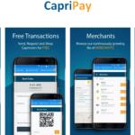 capricoin-capripay1